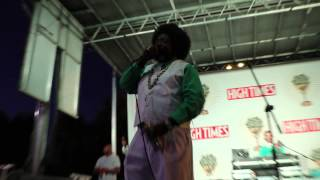 AfroMan- Because I Got High, Live HighTimes Canna Cup 2015