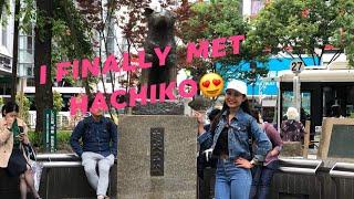 I finally met hachiko in Shibuya😍   Tokyo travel vlog day02