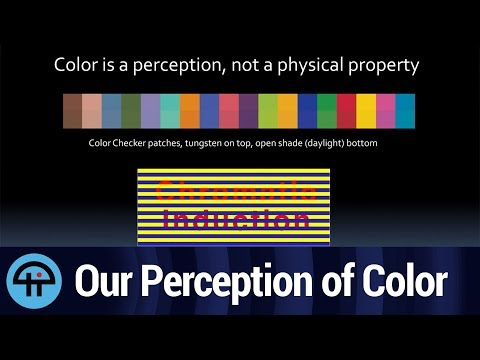 Our Perception of Color