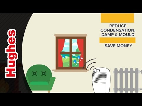 Ebac Dehumidifiers Smart Control