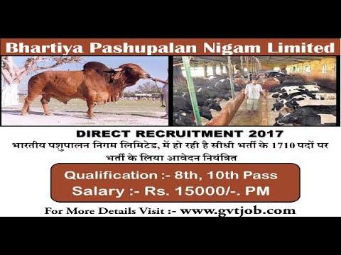 Bhartiya Pashupalan Nigam Limited (BPNL) Recruitment 2017 | All Over India Job