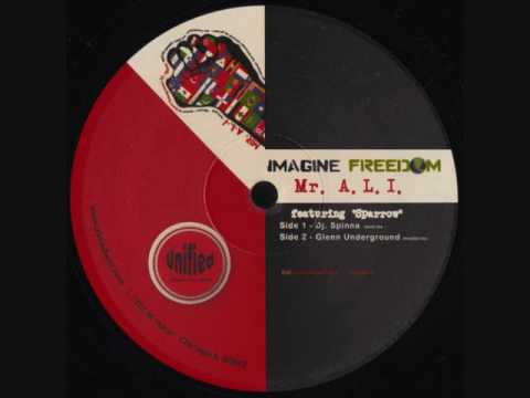 Mr. A.L.I. Feat Sparrow - Imagine Freedom (ImeeGU Mix)