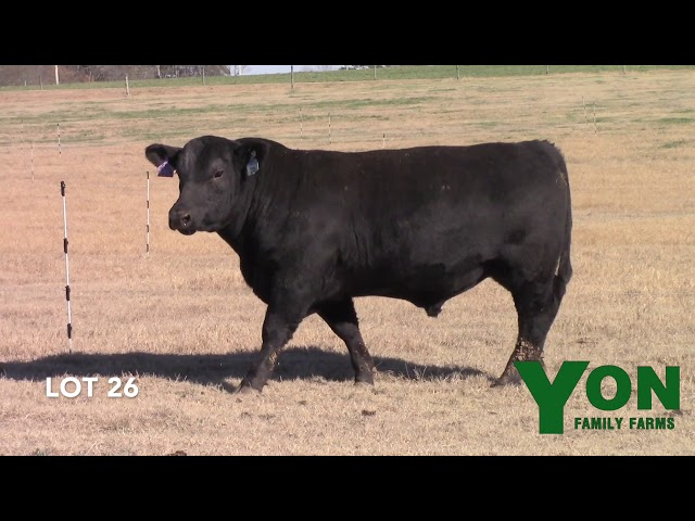 Yon Family Farms Lot 26