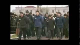 Анатолий Полотно - Купола