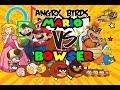 Angry Birds Super Mario Bros