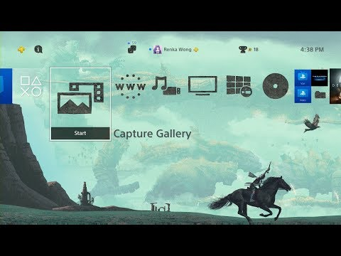 Shadow of the Colossus PSX Dynamic Theme PS4