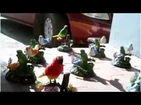 pájaros-de-mentira-que-parecen-de-verdad!!