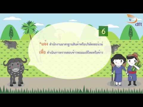 สารคดีข้าวหอมมะลิไทย ตอนที่ 22 ขั้นตอนการส่งออกสินค้ามาตรฐานข้าว