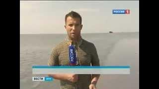 Обитателям Азовского моря угрожают паразиты(Ученые Южного научного центра академии наук уже неделю собирают образцы для исследований в акватории Азов..., 2012-09-02T11:38:32.000Z)