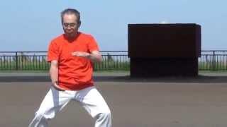 楊名時太極拳、佐々木博之師範の演舞