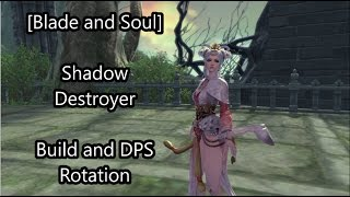 [Blade and Soul] Introductory Shadow Destroyer Build and DPS Rotation