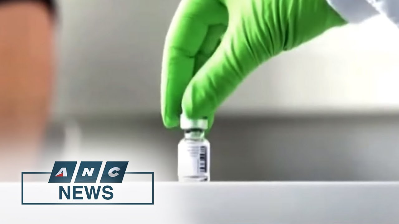 Pfizer vaccine appears effective against UK variant | ANC - ANC 24/7