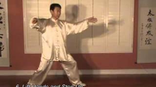 yang style tai chi long form 108 taiji 1