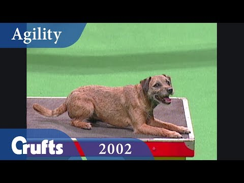 Agility Championship Final from Crufts 2002 | Crufts Classics