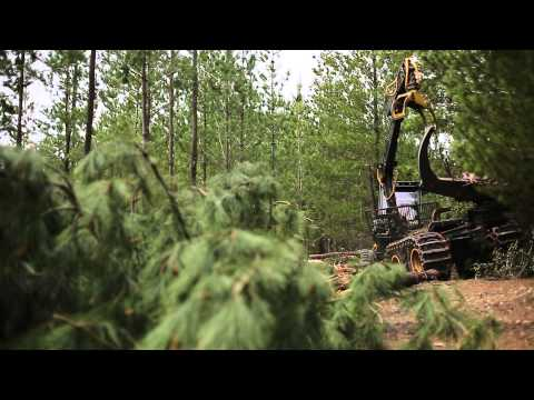 Forest center: Harvester prosilva & FCX