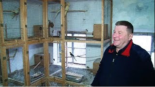 Марем Абдураманов и его попугаи для души