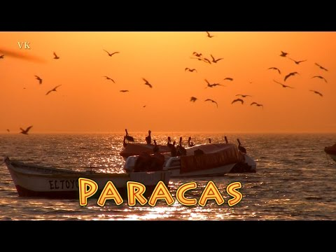 Paracas, Peru. Islas Ballestas Tour und Candelabro de Paracas (4/5)