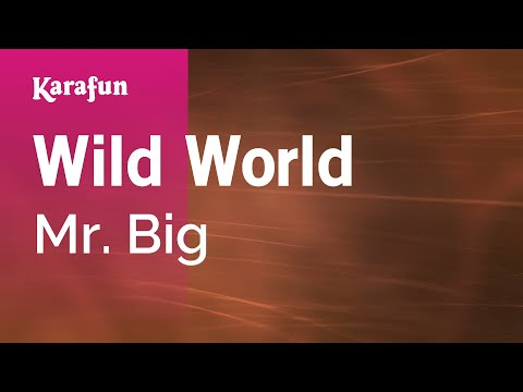 Karaoke Wild World  Mr Big *