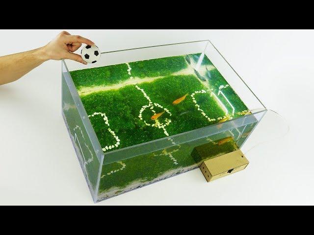 How to Make Unique Aquarium Football World Cup 2018 at Home