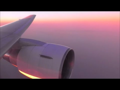 EL AL Israel Airlines Boeing 767-3Q8(ER) | London Luton to Tel Aviv *Full Flight*
