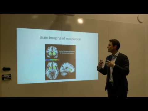 Gamification - how experiencing brain learning games create motivation - Magnus Sjögren