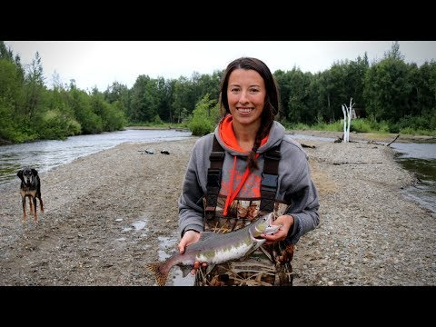 Alaska Pink Salmon Catch and Cook