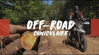 Off-Road en Mode Canicule 🥵 #Ride 85