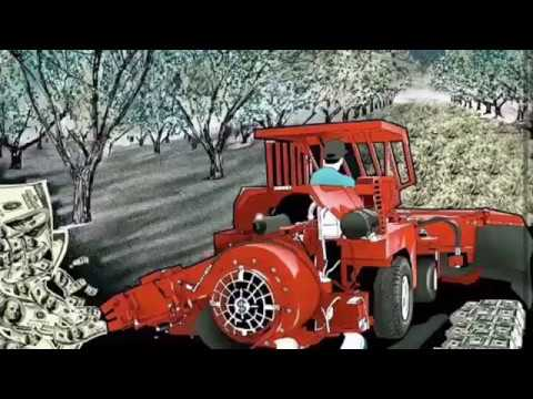 FARMING, HOW TO, -California Mechanical Walnut Harvesting. Equipment & Machines