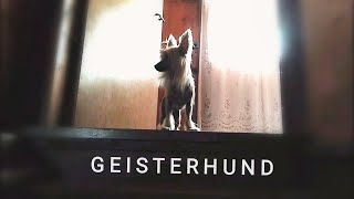 GEISTERHUND (трейлер)