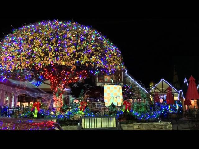8 Reasons To Experience Winter Magic in Gatlinburg, TN