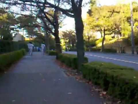 Jogging around outside of Japan Imperial Palace 皇居の外側の周りジョギング