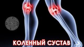 видео Всё, что нужно знать и делать для здоровья коленей