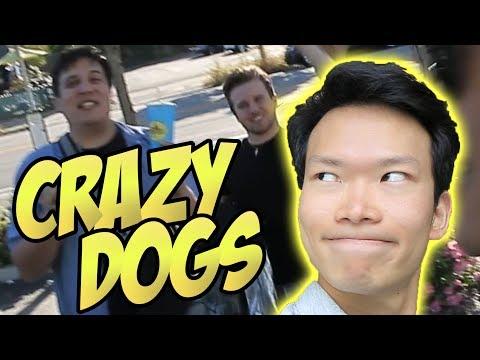 CALIFORNIA TOP DOGS!!!