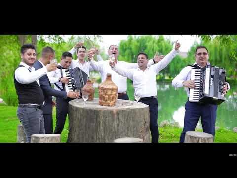 Nicu Paleru - Hai sa cante muzica [ Oficial Audio ] 2018