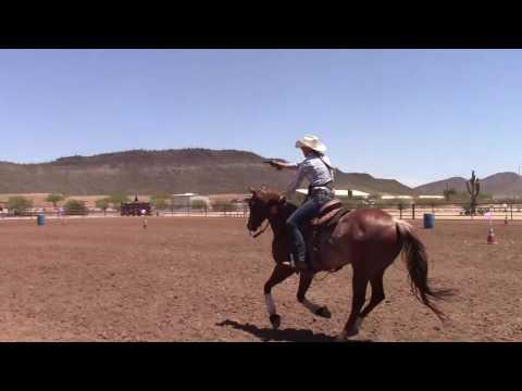 Cowboy Mounted Shooting Horse Training