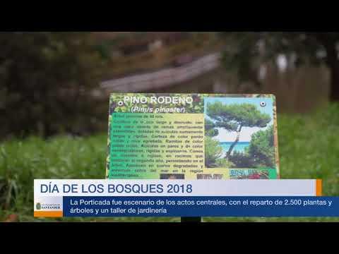 Día de los Bosques 2018