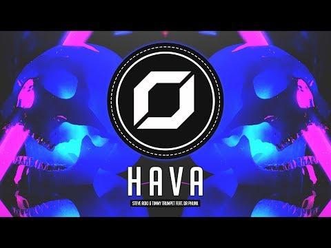 HARD-STYLE ◉ Steve Aoki & Timmy Trumpet - Hava (feat. Dr Phunk)