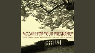 Sonata No. 11 A major (Alla Turca) , KV 331 (1783) : II. Allegro Moderato (Ambience)