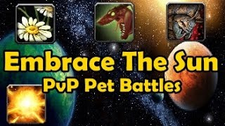 Embrace The Sun - Pvp Pet Battles