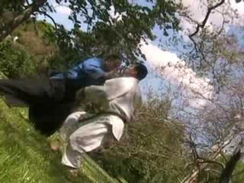 AIKIDO REAL SELF-DEFENSE - Irimi nage 2