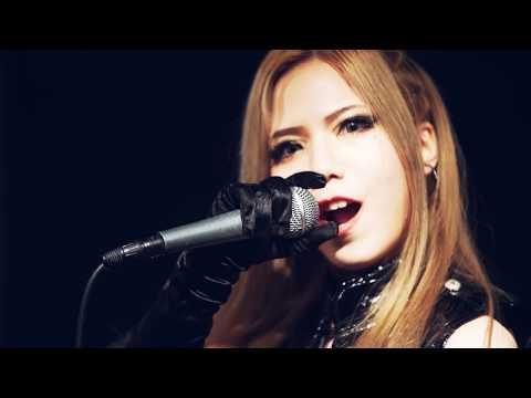 絶対倶楽部 ZETTAI CLUB【突進】(Official Music Video)