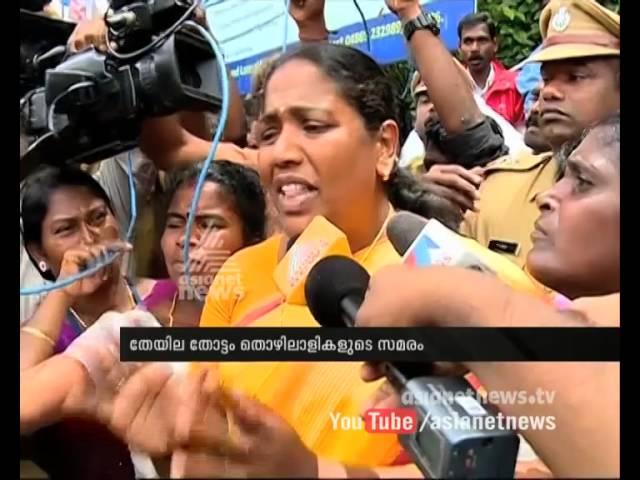 Munnar Strike : ES Bijimol MLA visit  Munnar plantation workers' strike