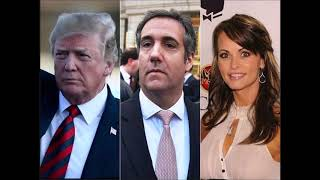 Donald Trump - Michael Cohen Payoffs to Women a 'Private Transaction' Not Campaign Contribution