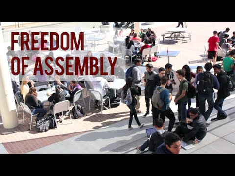 a report of the right of freedom in america Us news & world report  the united states prides itself on upholding  freedom, but recent research indicates america  terror, the war on drugs, and  the decline in the rule of law and economic liberty in the united states.