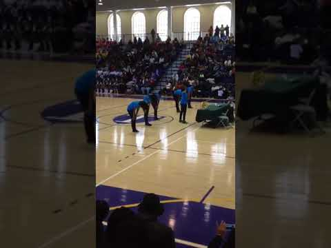Mattawoman Middle School Steppers