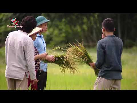 Mô hình phát triển nông nghiệp bền vững - câu chuyện thành công.
