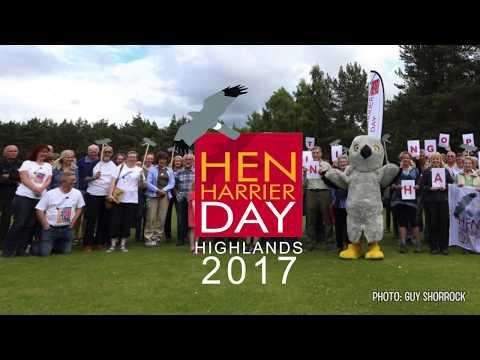 Hen Harrier Day Highlands 2017