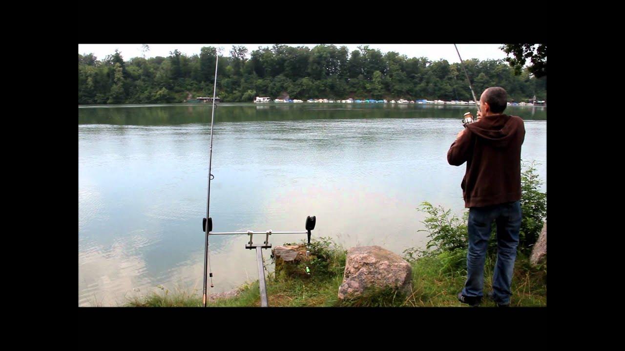 karpfenangeln am rhein carp fishing mit drill youtube