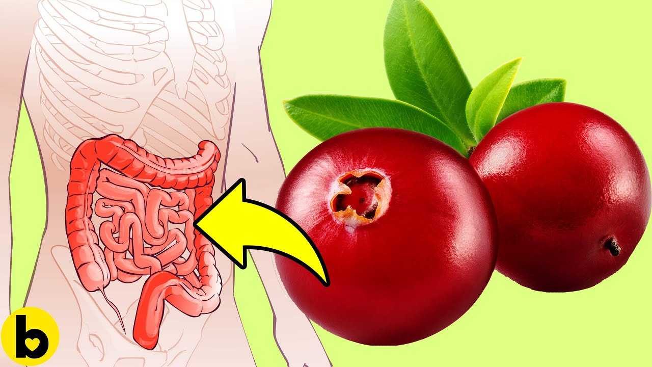 What happens to your Body when you Eat Cranberries Every Day