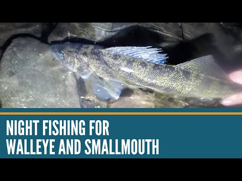 Night Fishing With Lures,  Walleye, Smallmouth Bass, Channel Catfish, Night Fishing From Shore